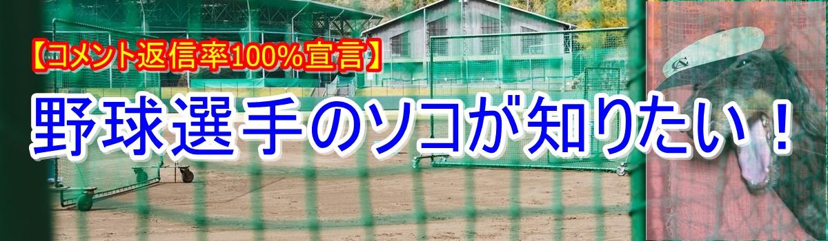 野球選手のソコが知りたい!